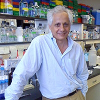 Gerard Karsenty, MD, PhD